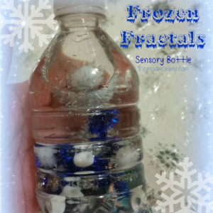 Frozen-Fractals-Sensory-Bottle