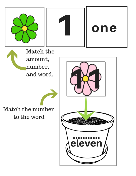 fLOWER COUNTING (1)