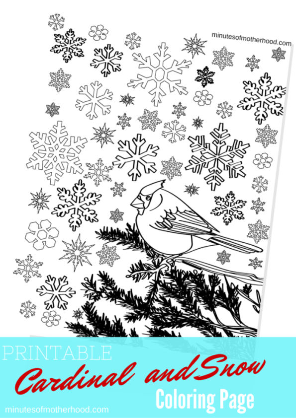 Printable Cardinal and Snow Adult Coloring Page