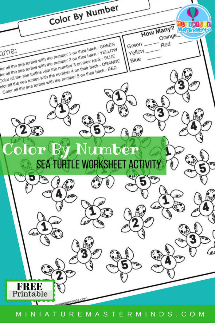 Reading comprehension - Green sea turtle | PrimaryLeap.co.uk