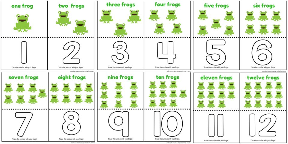 worksheet. Number 1 Worksheets. Grass Fedjp Worksheet Study Site